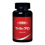 Fairing Trib-70